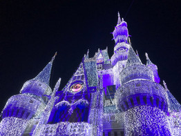 Is there a place in Walt Disney World for the non-Disney fan?