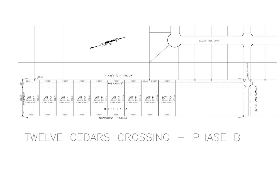 TWELVE CEDARS CROSSING_PHASE B MODEL 120