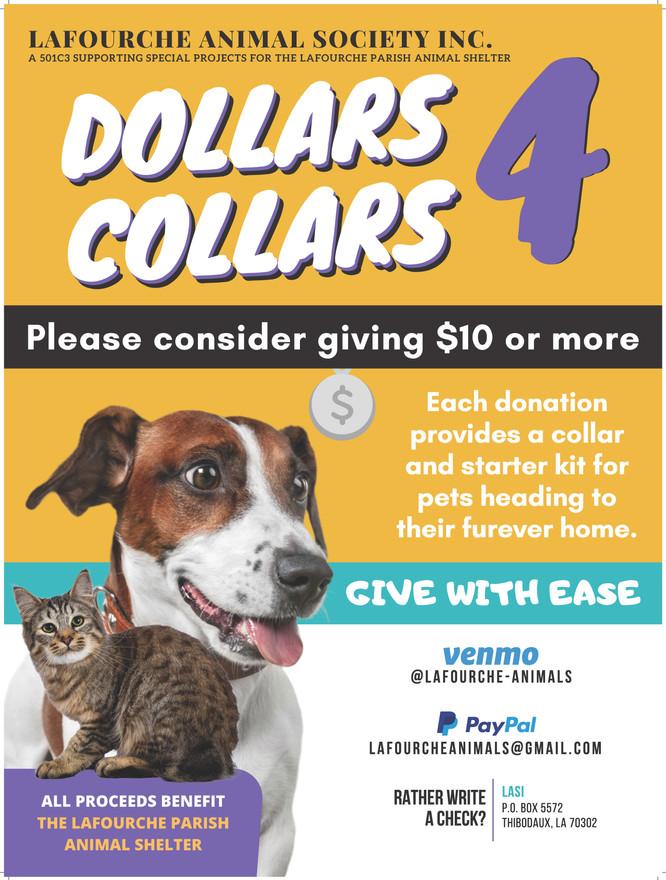 dollars 4 collars.jpg