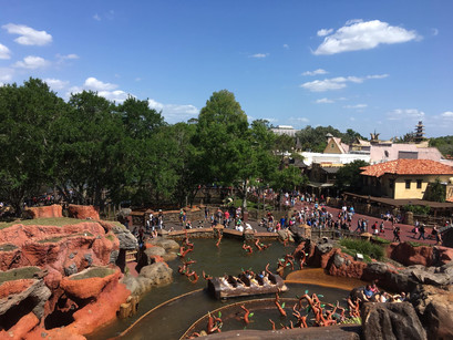 The three rides with the best views of Magic Kingdom® Park