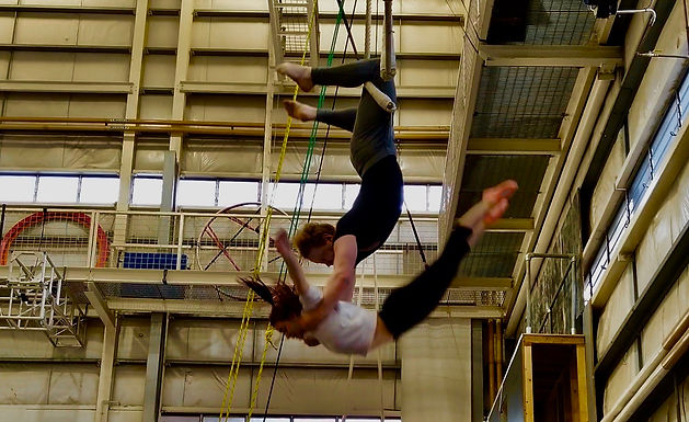 Adult Trapeze - All levels