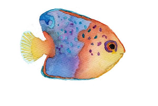 tropical fish 1 copy.jpg