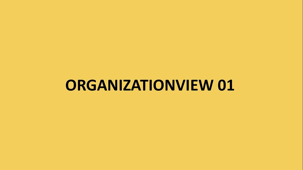 ORGANIZATIONVIEW 01