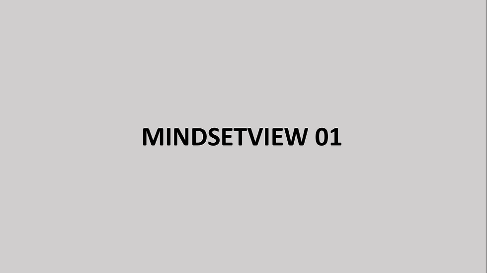 MINDSETVIEW
