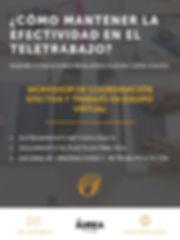 Workshop_de_coordinación_efectiva_y_tr