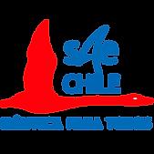 Logo_NPT_trazado_WEB.png
