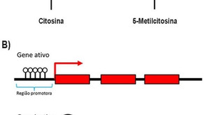 Epigenética e a Desconfiança a Respeito do Lamarckismo