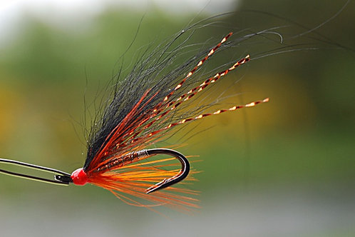 Copper Stinchar