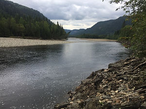 Gaula RIver Norway Hosted Fishing