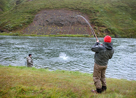 Playing big salmon in Iceland