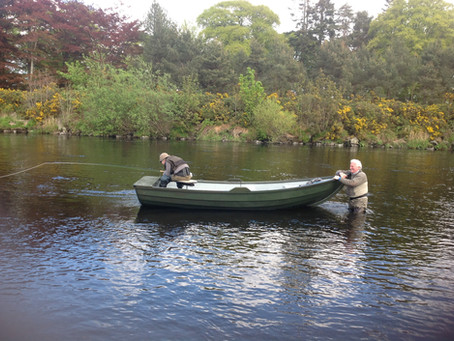 Conserving Salmon – How to save but catch more!