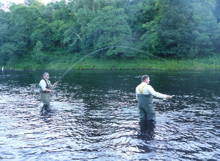 Covid -19 – Should Salmon Fishing Stay Open?