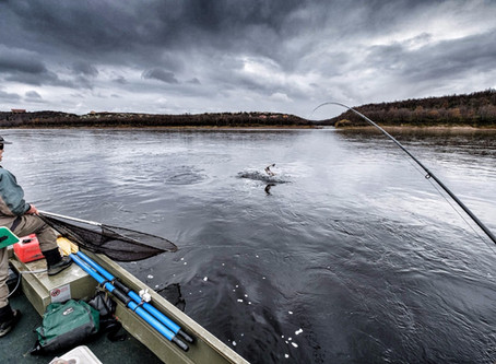 The Business of Salmon Fishing