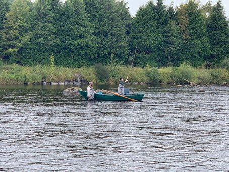Catching Salmon In September - Luck, Skill or a bit of both?