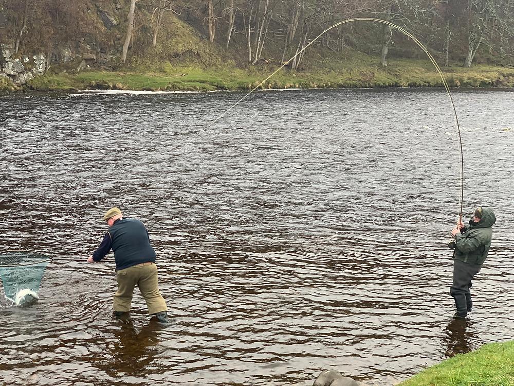 Macallan Salmon Beat
