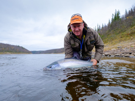 Why go to Norway, Iceland or Russia to catch salmon?