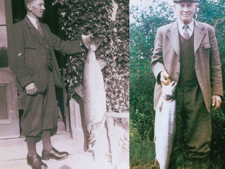 Salmon Fishing with Hindsight