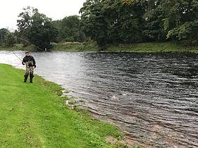 Arndilly River Spey Speyonline Fishing