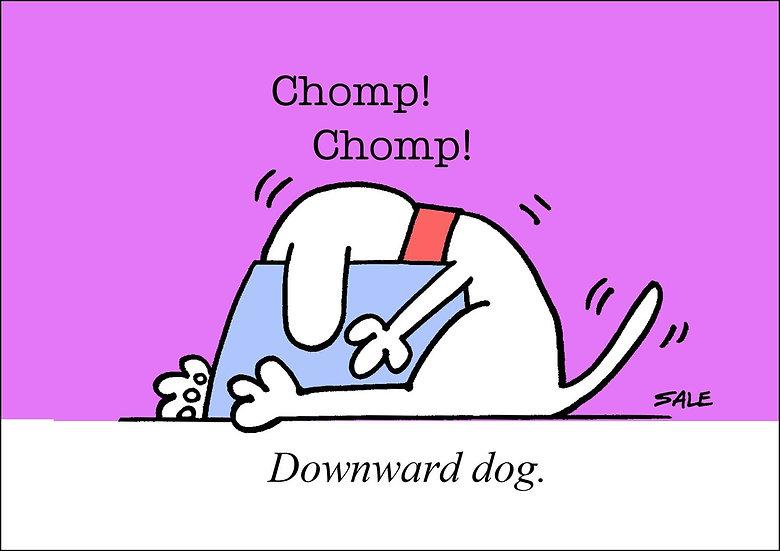 Downward Dog.