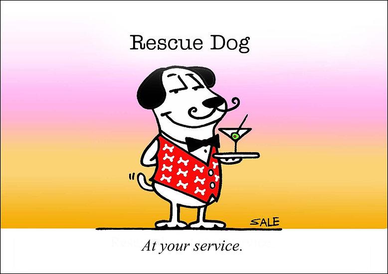 Rescue Service Dog.
