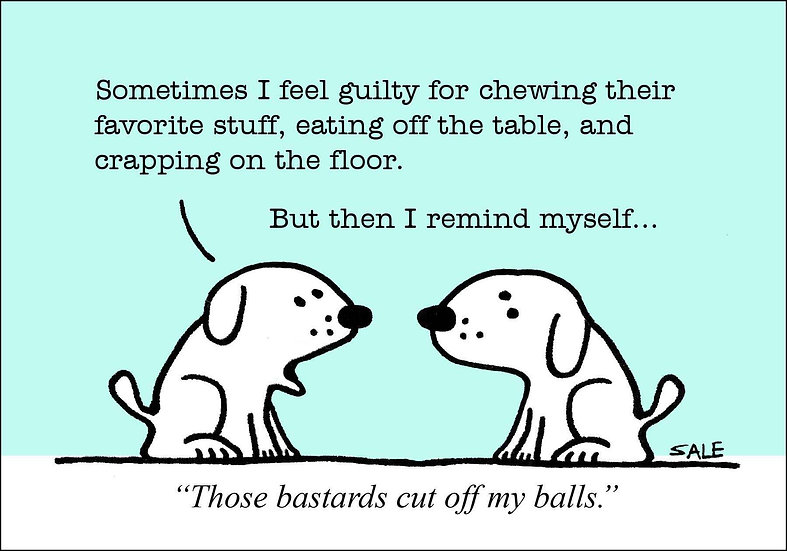 Cut Off My Balls.