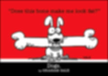COVER_DOG.jpg
