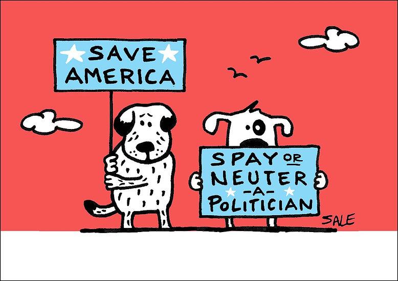 Neuter Politicians.