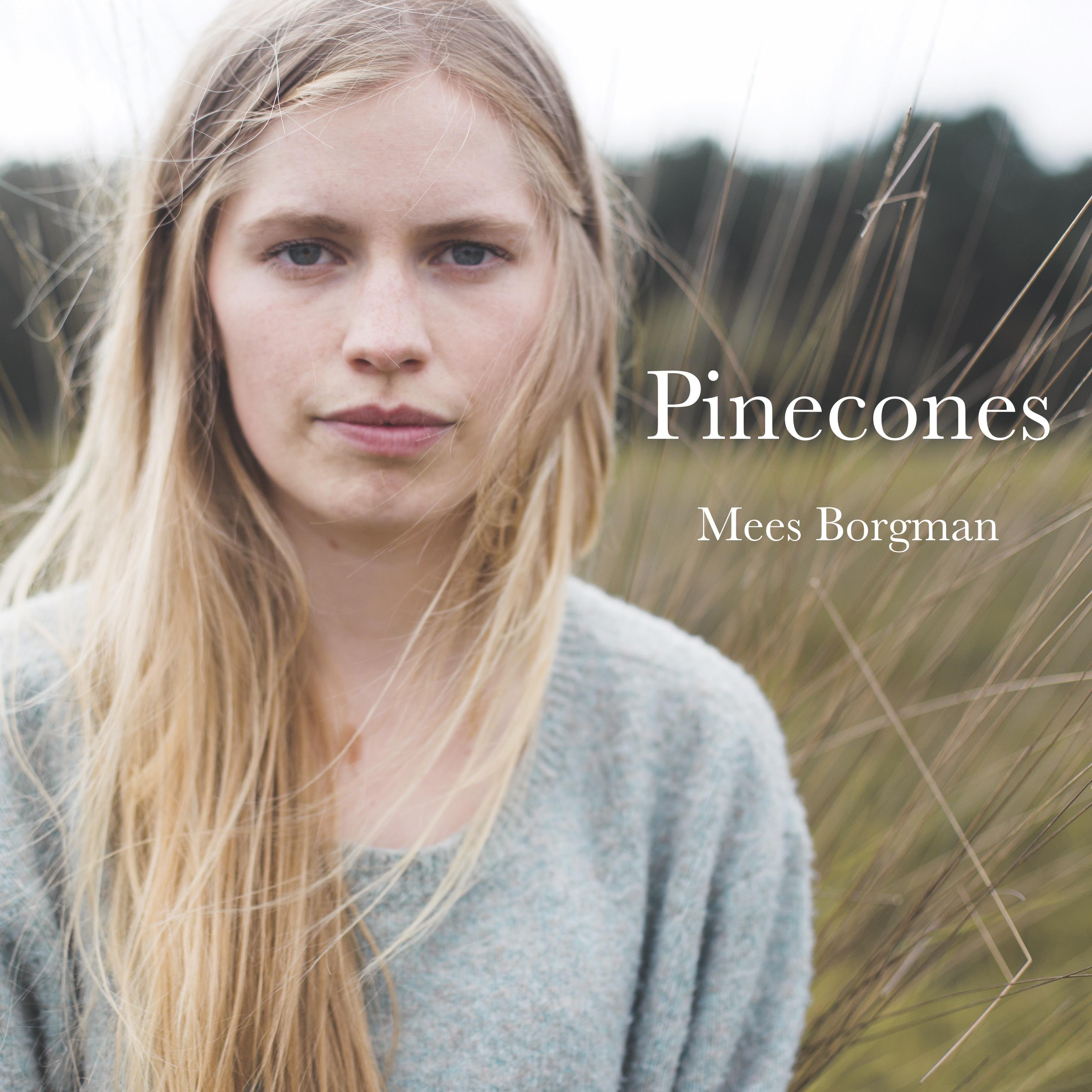 Pinecones - Mees Borgman