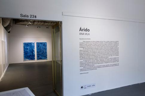Árido, Fundación Tres Pinos, 2017.