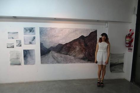 Sol Cisneros y una seleccion de su trabajo realizado durante el año 2016 y 201