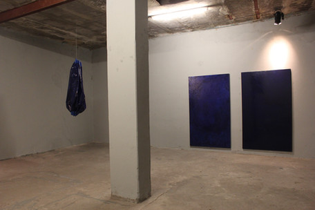 Proyecto Aguamala 1° Edición, Junio - Noviembre 2016