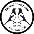 Hoyland Town.jpg