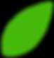 Live Oak Leaf.png
