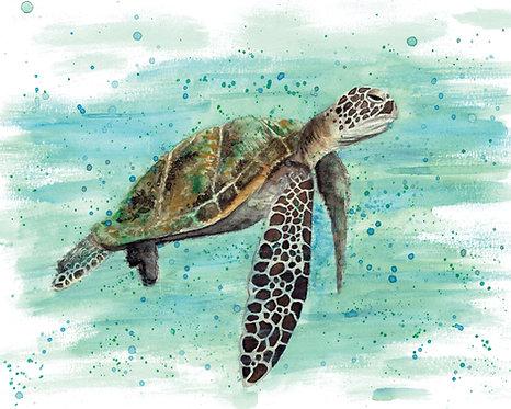 Turtle Watercolor Art Print   |   Animals