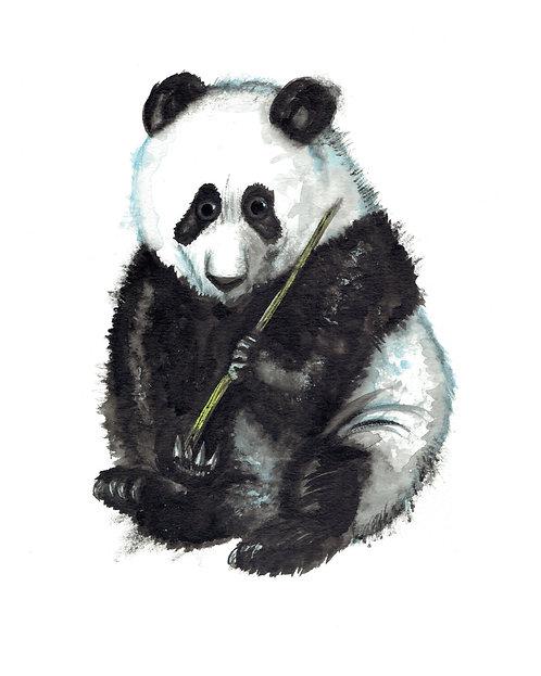 Panda Watercolor Art Print   |   Animals