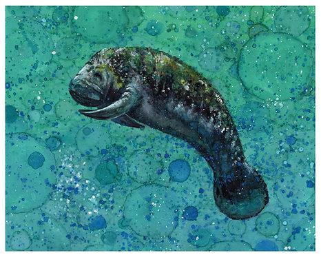 Manatee Watercolor Art Print   |   Animals