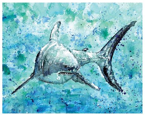 Shark Watercolor Art Print   |   Animals