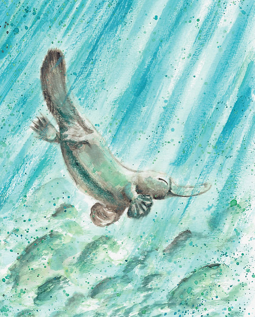 Platypus Watercolor Art Print   |   Animals