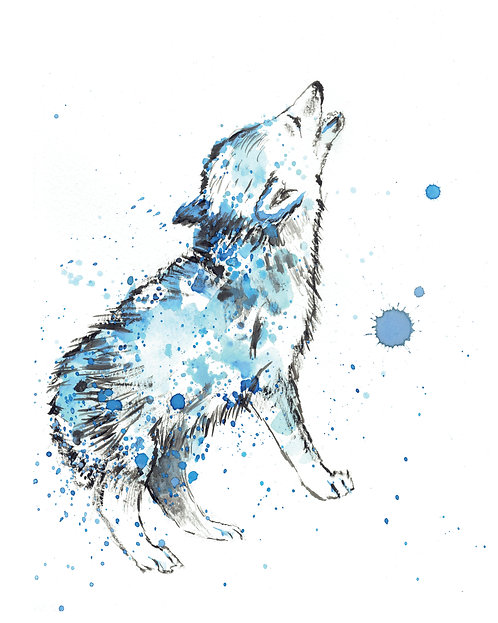 Blue Wolf Watercolor Art Print   |   Animals