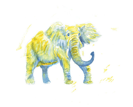 Elephant Watercolor Art Print   |   Animals