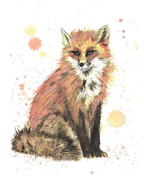 Fox Watercolor Art Print   |   Animals