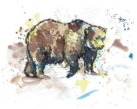 Bear Watercolor Art Print   |   Animals