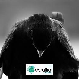Effarouchement Natur'Ailes pour Verallia