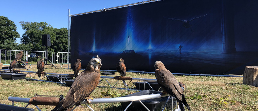 Spectacle Natur'Ailes