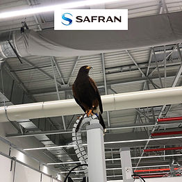 SAPHRAN HELICOPTER ENGINES Innovation