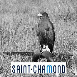 Effarouchement-Saint-Chamond.jpg