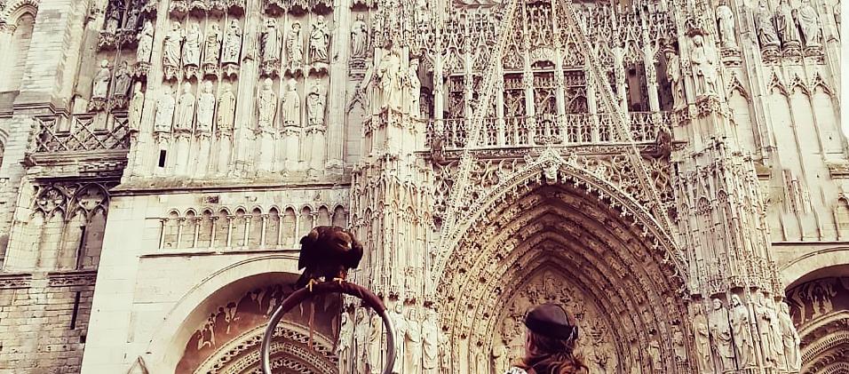 Spectacle Natur'Ailes à Rouen