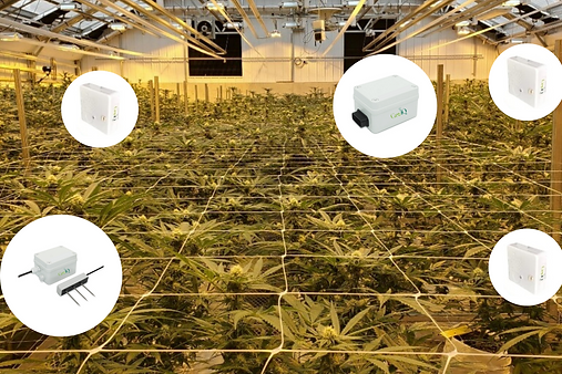 Gro iQ Sensors in GrowRoom.png