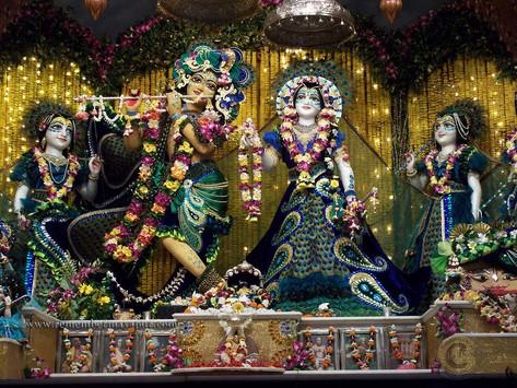 Why Did You Choose Krishna?