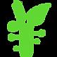 greensupernaturals-01.png